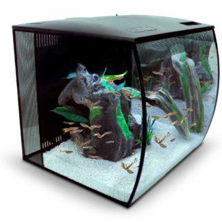 Das Nano Aquarium für Deine Fische