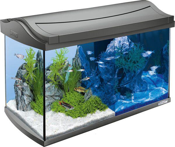Tetra AquaArt Discovery Line - Ein neues Zuhause für Deine Fische